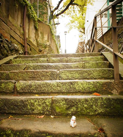 長崎の石畳よん